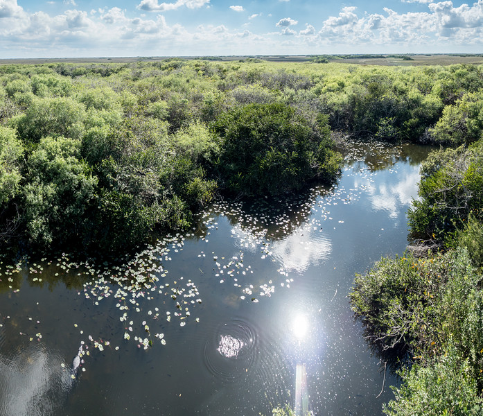 Everglades-48-Pano i4.jpg