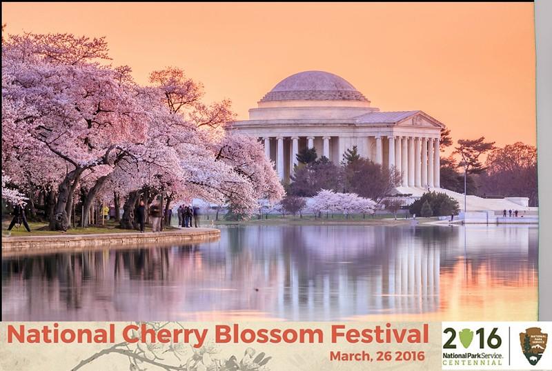 Boothie-NPS-CherryBlossom- (194).jpg