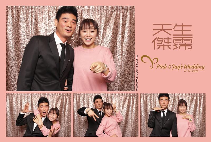 Pink.Jay (128).jpg