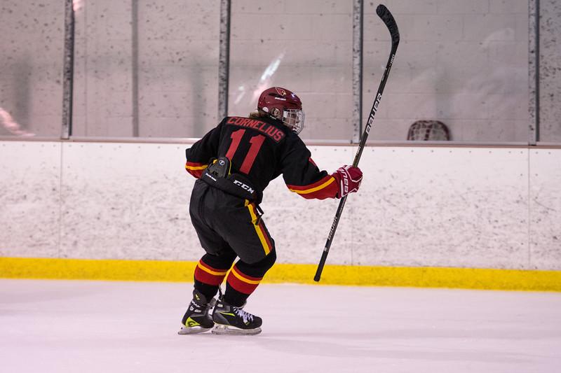 20180202 BI Hockey 374.jpg