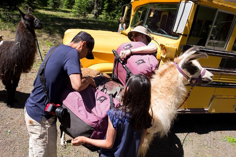 Jay Waltmunson Photography - Wallowa Llamas Reunion - 072.jpg