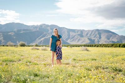 2019 - Borrego Flower Fields