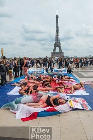 Paris - Stop Taiji (Sep 17)