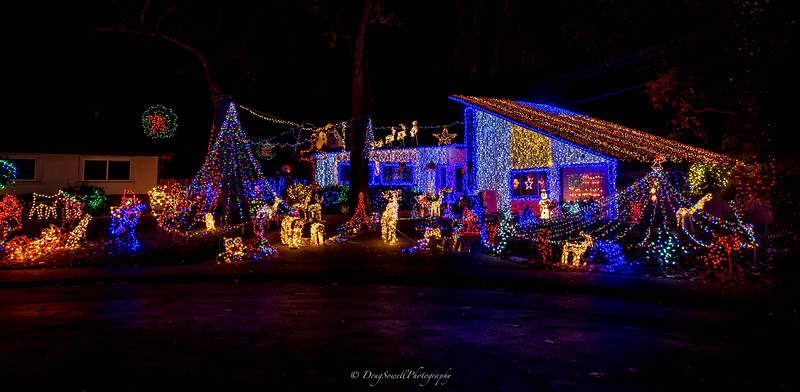 WSac_ChristmasLights-20.jpg