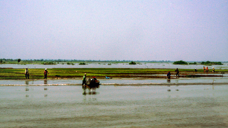 Farmlands of the Tonle Sap
