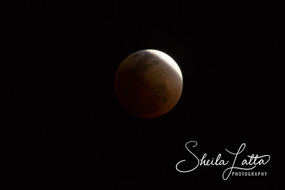 Blood Moon 04-14-14