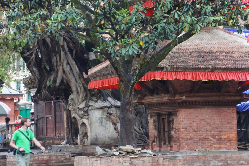 nepal 2011 (380 of 382).jpg