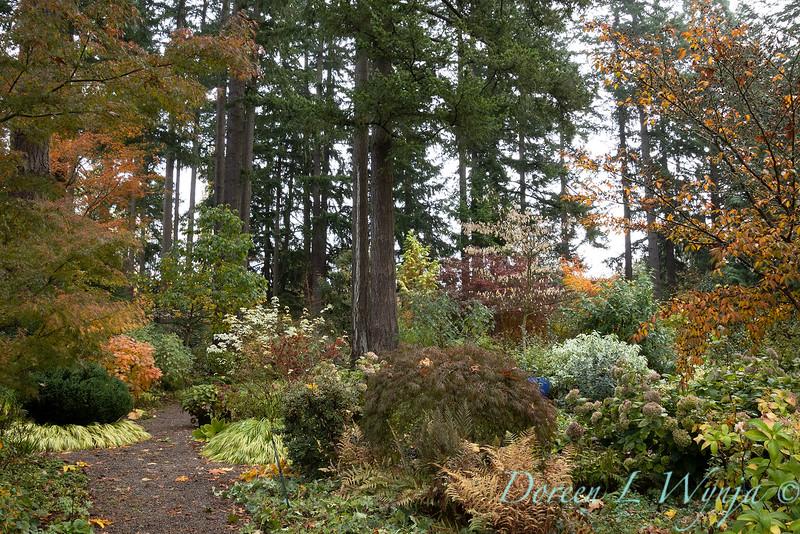 Dietrick fall garden_2060.jpg