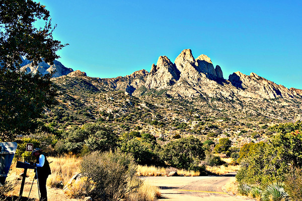Pine Tree Loop Hike - Organ Mountains