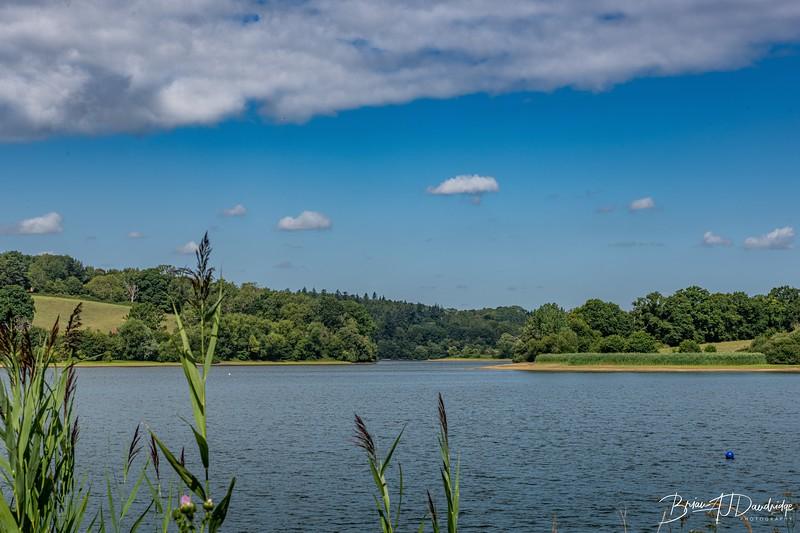 Ardingly Reservoir_D850-0348.jpg