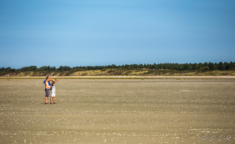 FRANCE - NORD BAIE DE SOMME