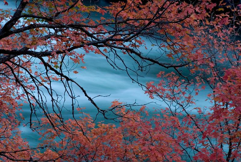 maple-river1.jpg