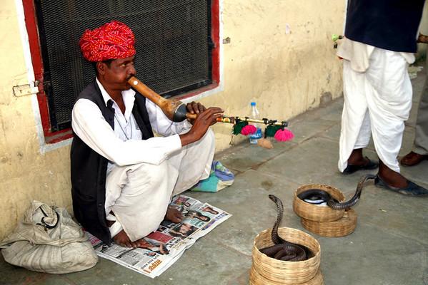 Indigestible India