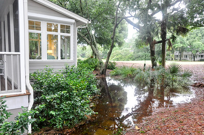 The back of our house where standing water has never been before.
