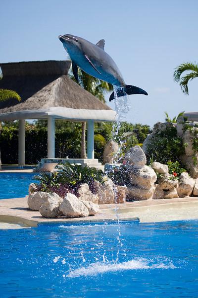 Dolphinaris Cancun 10.jpg