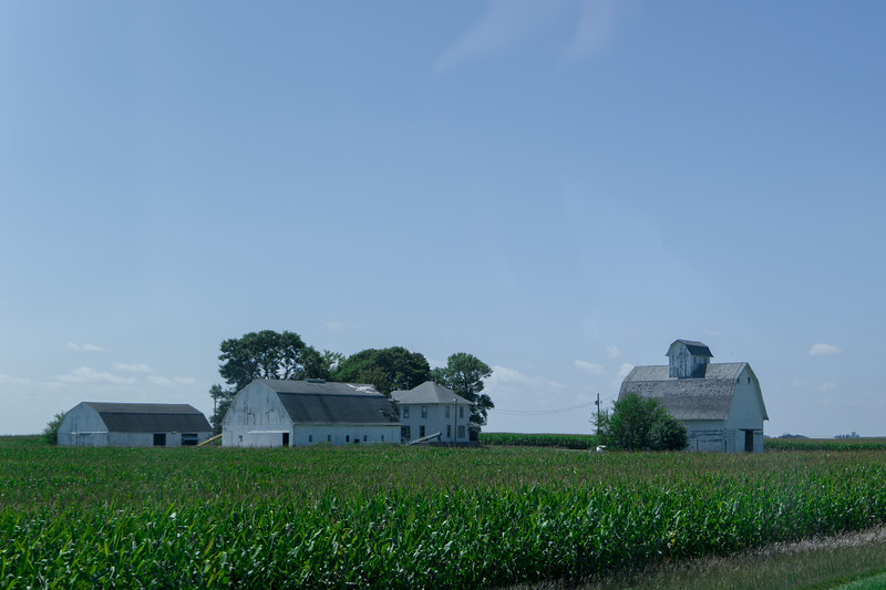 Farm Near Webster City, IA