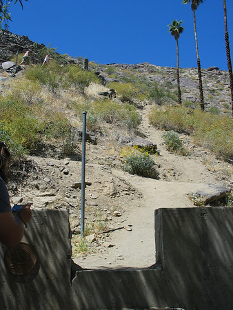 Palm Springs 2008