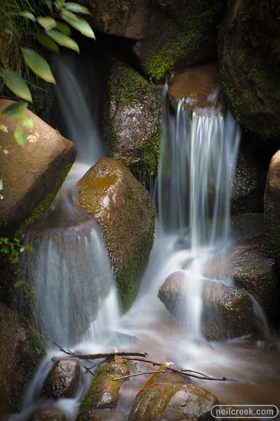 creek151010-223.jpg