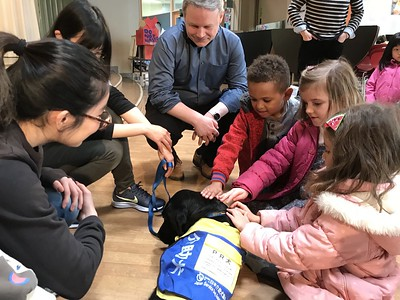 Service Dog visits NIS!