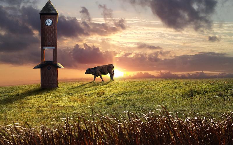 cowclock.jpg