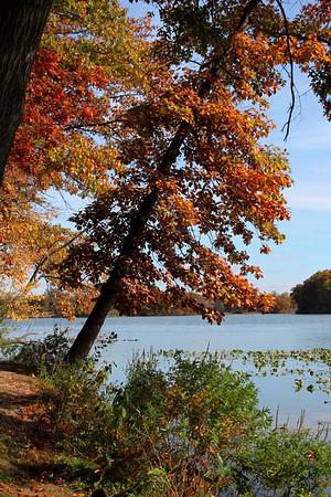 Fall Photos 2014 Pt. 2