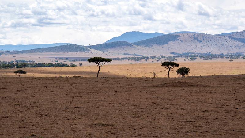 Tanzania-Serengeti-National-Park-Safari-06.jpg