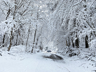 Bennington County snow - 041621