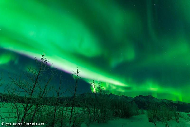 Nov20_Knik River Aurora-Juno Kim-6105191.jpg