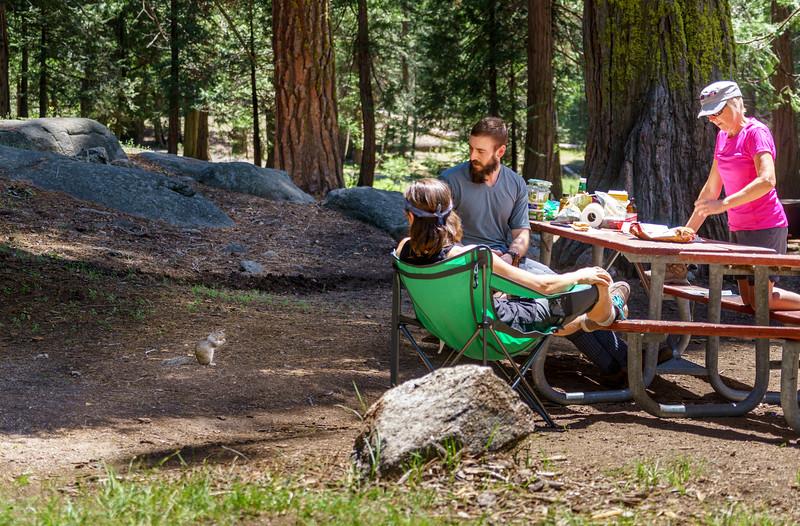 Sequoia -090616-088.jpg