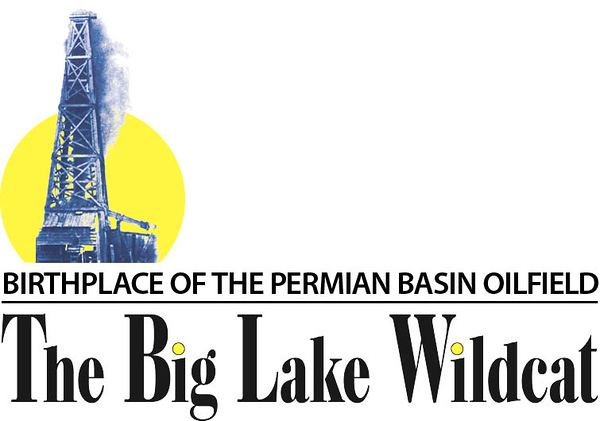 Big Lake Wildcat Logo