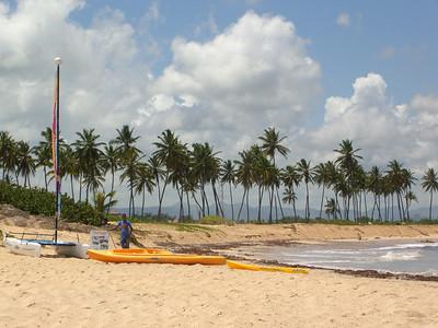 The Beach and Ocean