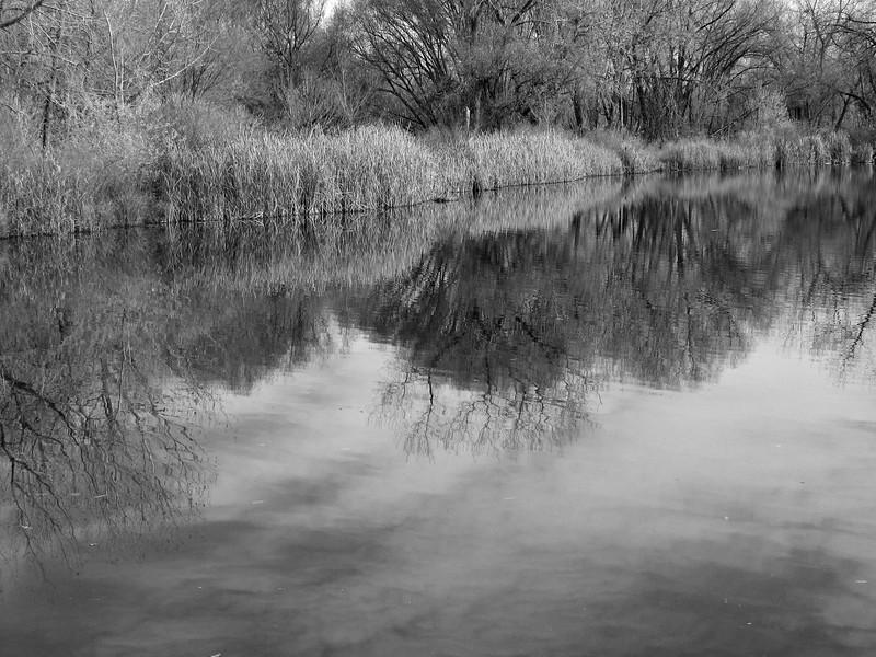 amh PARKS & WATER (227).jpg