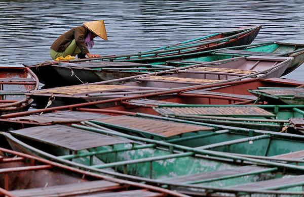 Les barques de Tam Coc