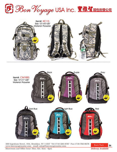 BackPack p54-X2.jpg
