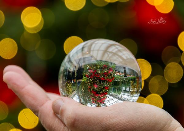 A Longwood Gardens Christmas 2018