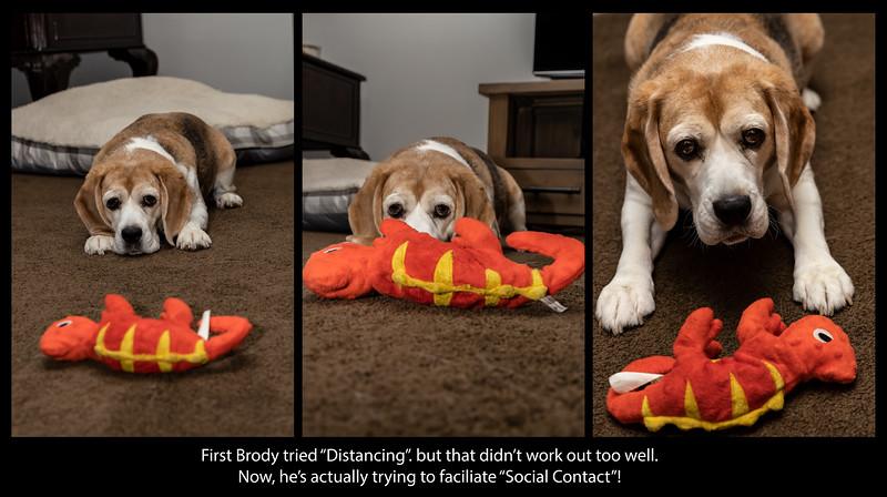 Brody Distancing.jpg