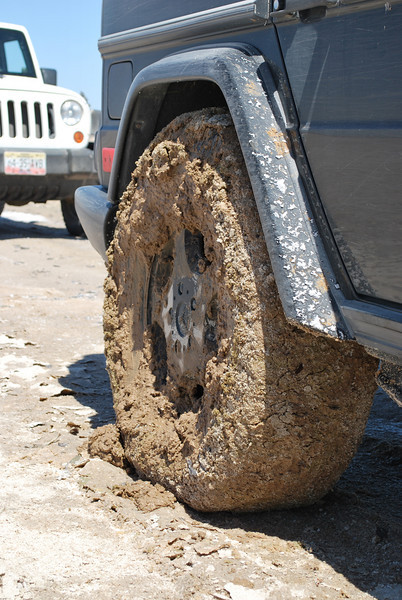not pretty - but I got out of the salt muck