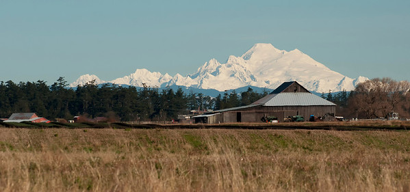 Whidbey Island Images