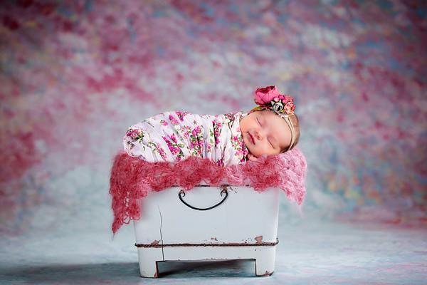 Lucy Newborn 2019