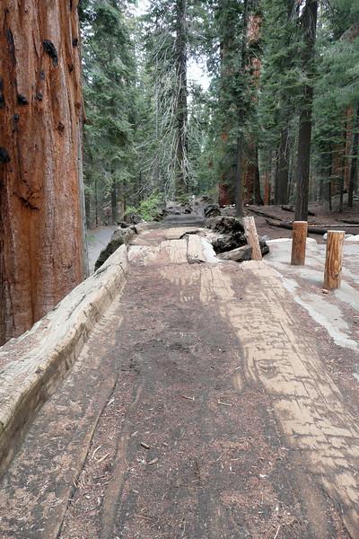 Auto Log. Sequoia NP