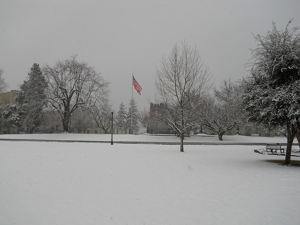 FUMA's First Snow