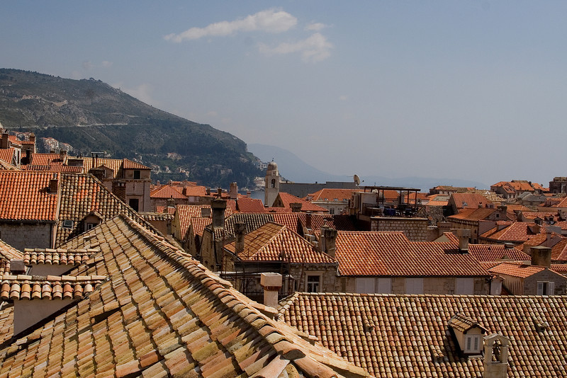 Old and New Roofs.jpg