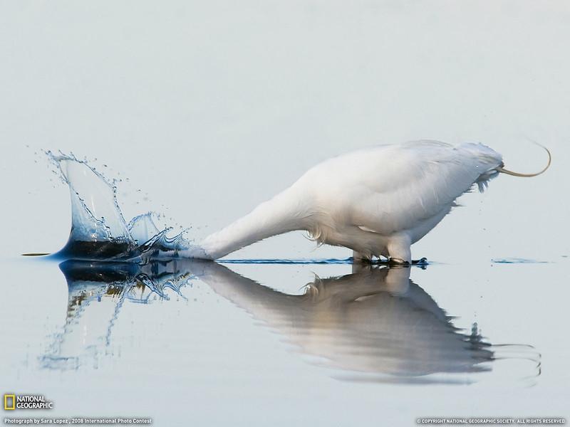 PlayWp-Nature (47).jpg
