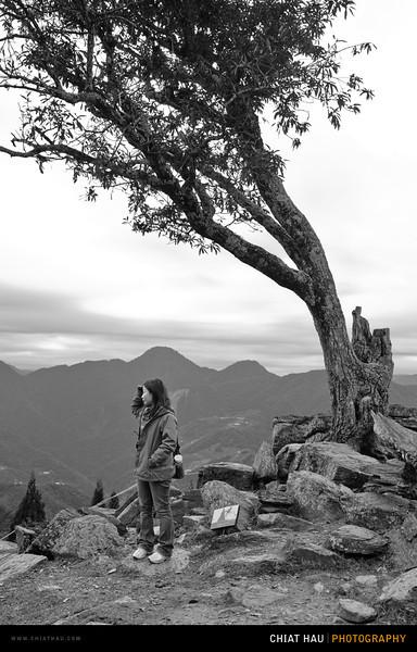 Chiat Hau Photography_Travel_Portrait_Landscape_Taiwan_Day 5-110.jpg