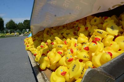 Service First Duck Derby 2015