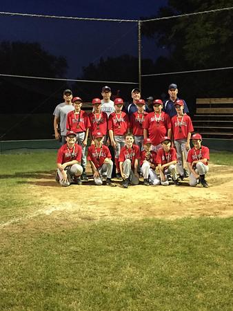 Youth baseball champions