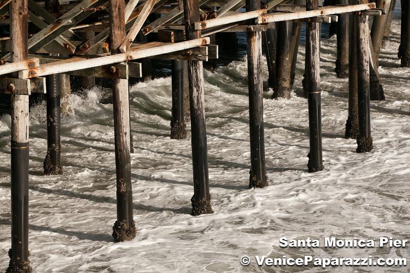 VenicePaparazzi-37.jpg