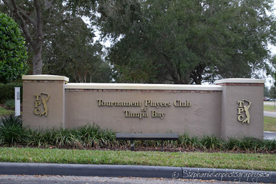 TPC Tampa Hank Haney BMW Clinc