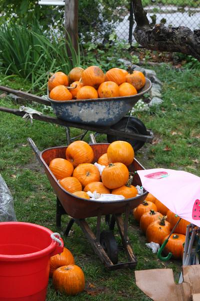 09.10.18 Harvest Festivalf-10-20.jpg