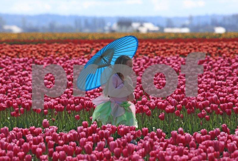 Girl umbrella 3614c.jpg
